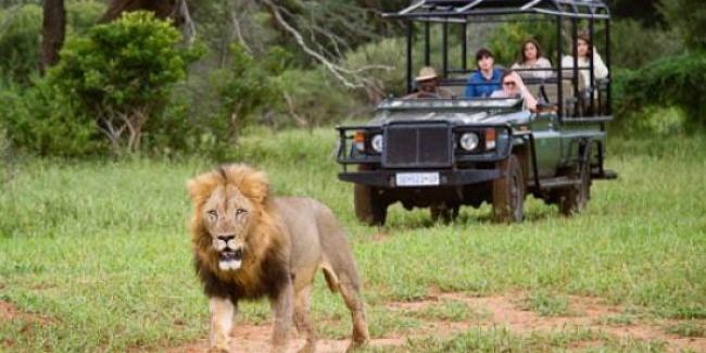 Safari 4x4 Sudafrica